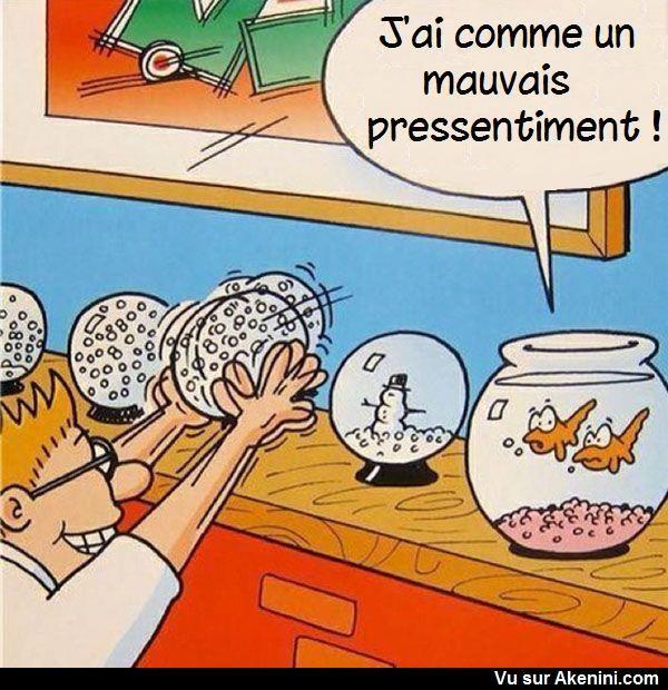 Akenini Com Images Droles Animaux Funny Cartoons Animals