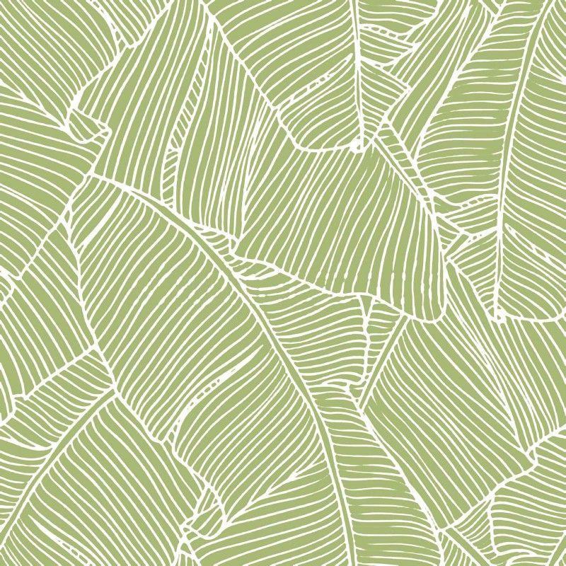 papier peint design bananier motifs fonds papier. Black Bedroom Furniture Sets. Home Design Ideas