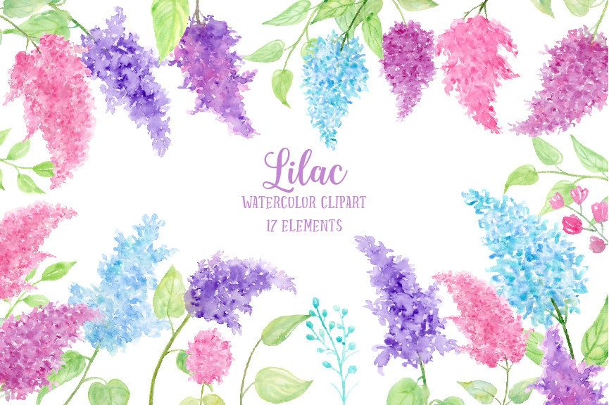 Watercolor Clipart Lilac - pink, blue and purple lilac flowers and decorative elements for instant download by CornerCroft on Etsy