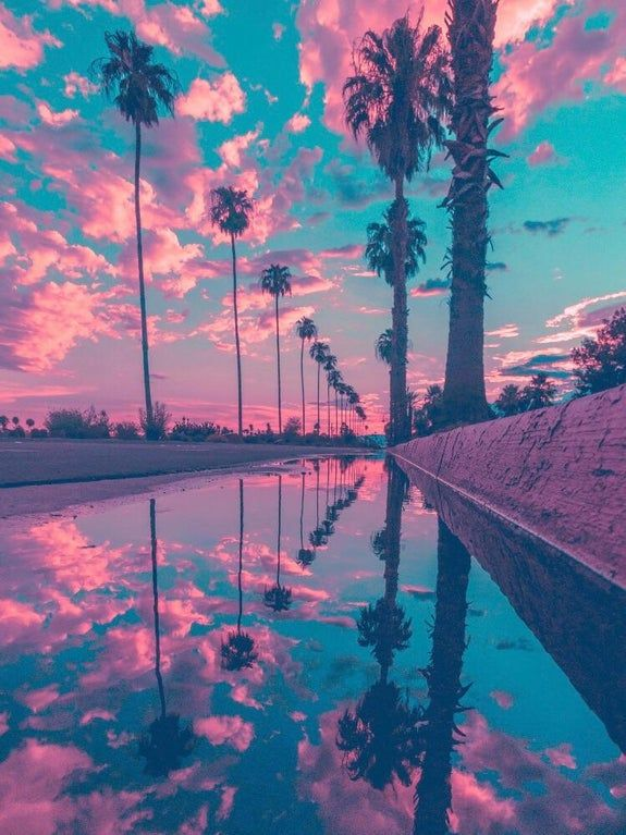 This reflection