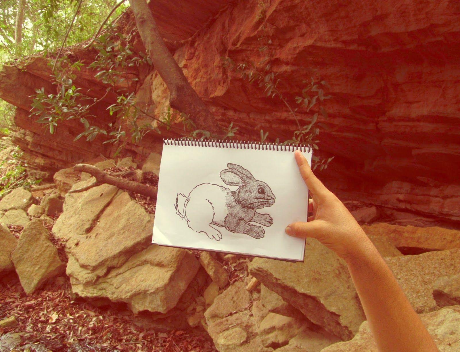 Dan arte: Un bosque y un conejo.