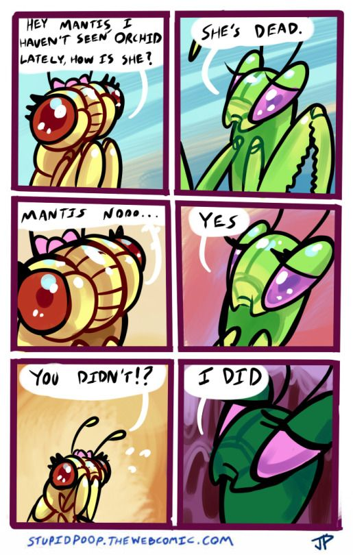 Jugglingdinosaur Funny Animal Comics Cute Comics Stupid Funny Memes