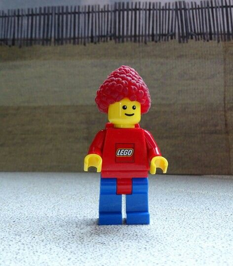 Stor with raspberry afro hair /lego man