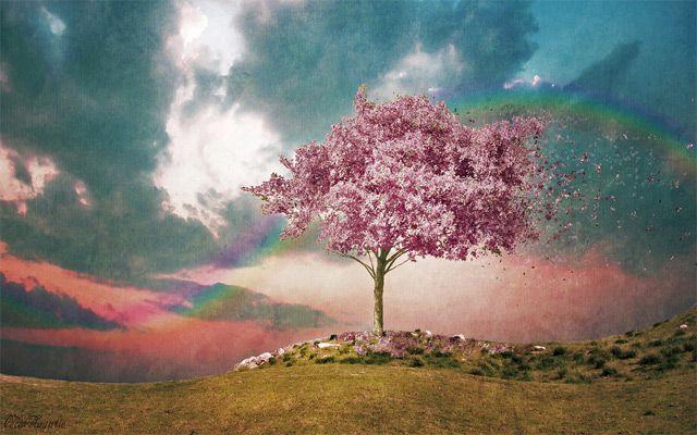 20 Inspiring Desktop Wallpapers for Spring
