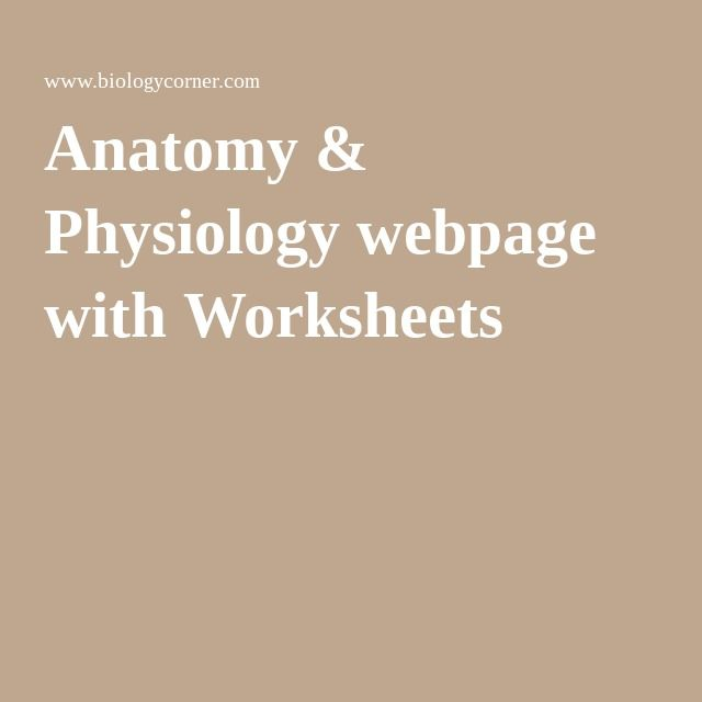 Anatomy & Physiology webpage with Worksheets | Science - anatomy ...