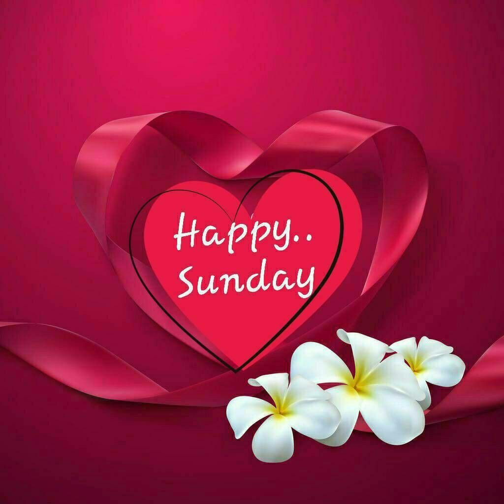 Happy Sunday Greetings | Happy sunday morning, Good day wishes ...