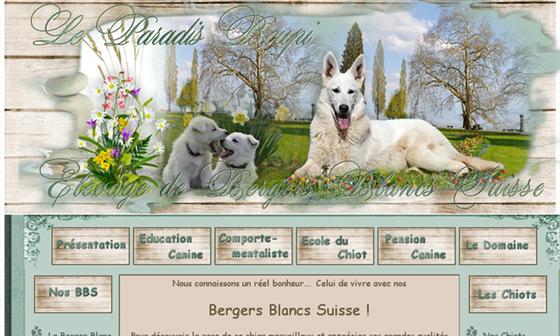 Paradis Boupi   Elevage de Bergers Blancs Suisse et Bergers des Shetlands #SaintGeorgesAunay     - Saint-Georges-d'Aunay, Calvados, Normandie