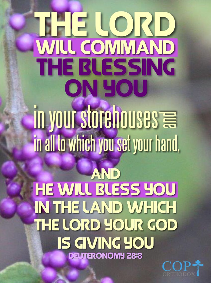 Deuteronomy 28 8 The Lord Will Command The Blessing On You In Your Storehouses And In All To Which You Set Your Hand And He Will Bless You In The Land Which Th