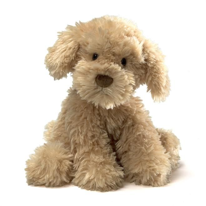 Gund 320158 Nayla Cockapoo Cockapoo dog, Teddy bear