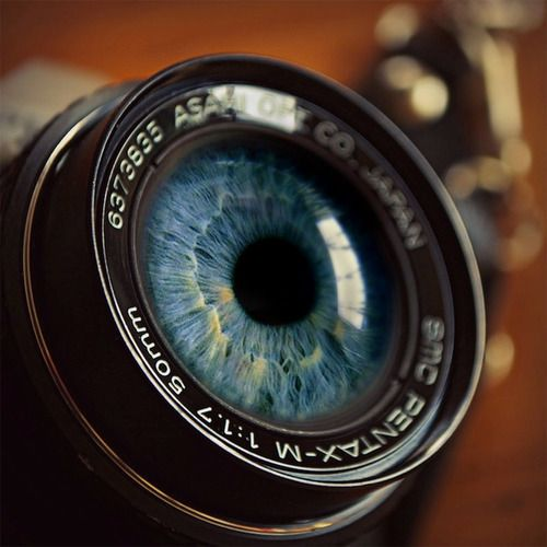 Image result for camera lens eyes