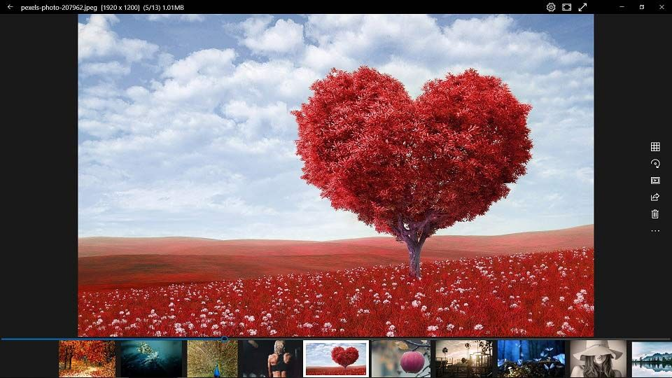 Top 10 Best Photo Viewers For Windows 10 2021 Photo Viewer Cool Photos Imagine Pictures