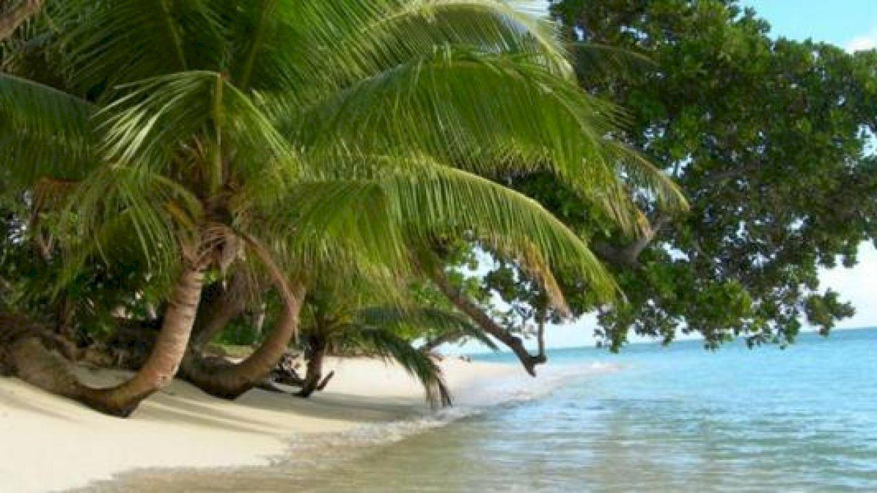 أين توجد مدغشقر Outdoor Decor Outdoor Decor