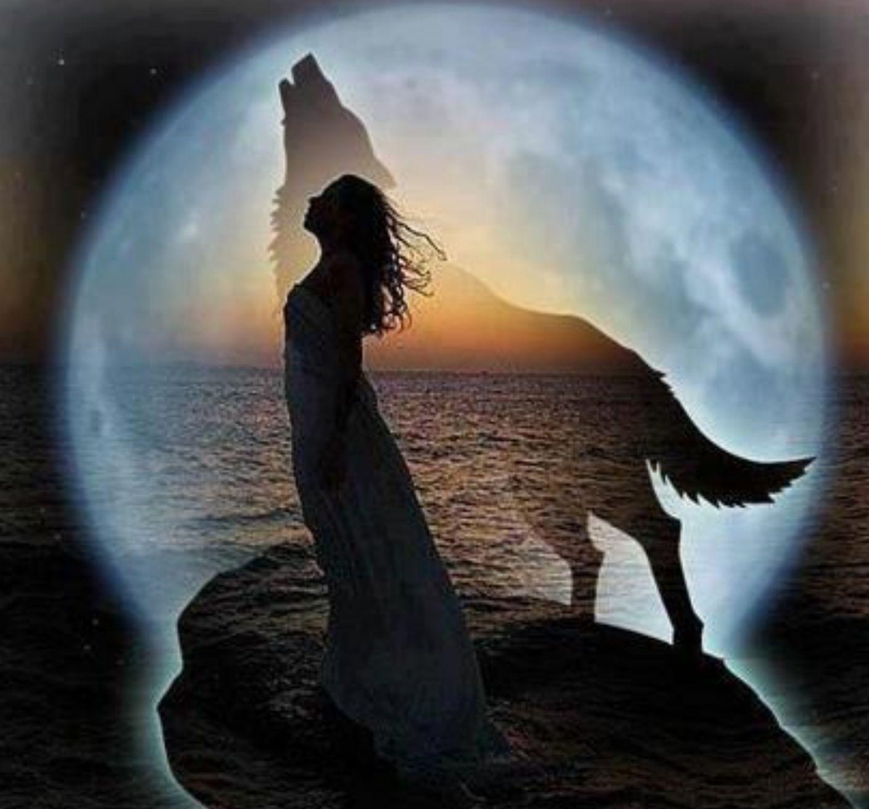 Howl my dear
