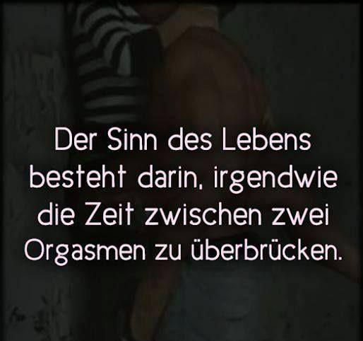 Liebe, Sex und die nackte Wahrheit über Bezeihungen - Das Seminar : http://www.nielskoschoreck.de/liebesexseminar  #Liebe   #Sex   #Beziehung