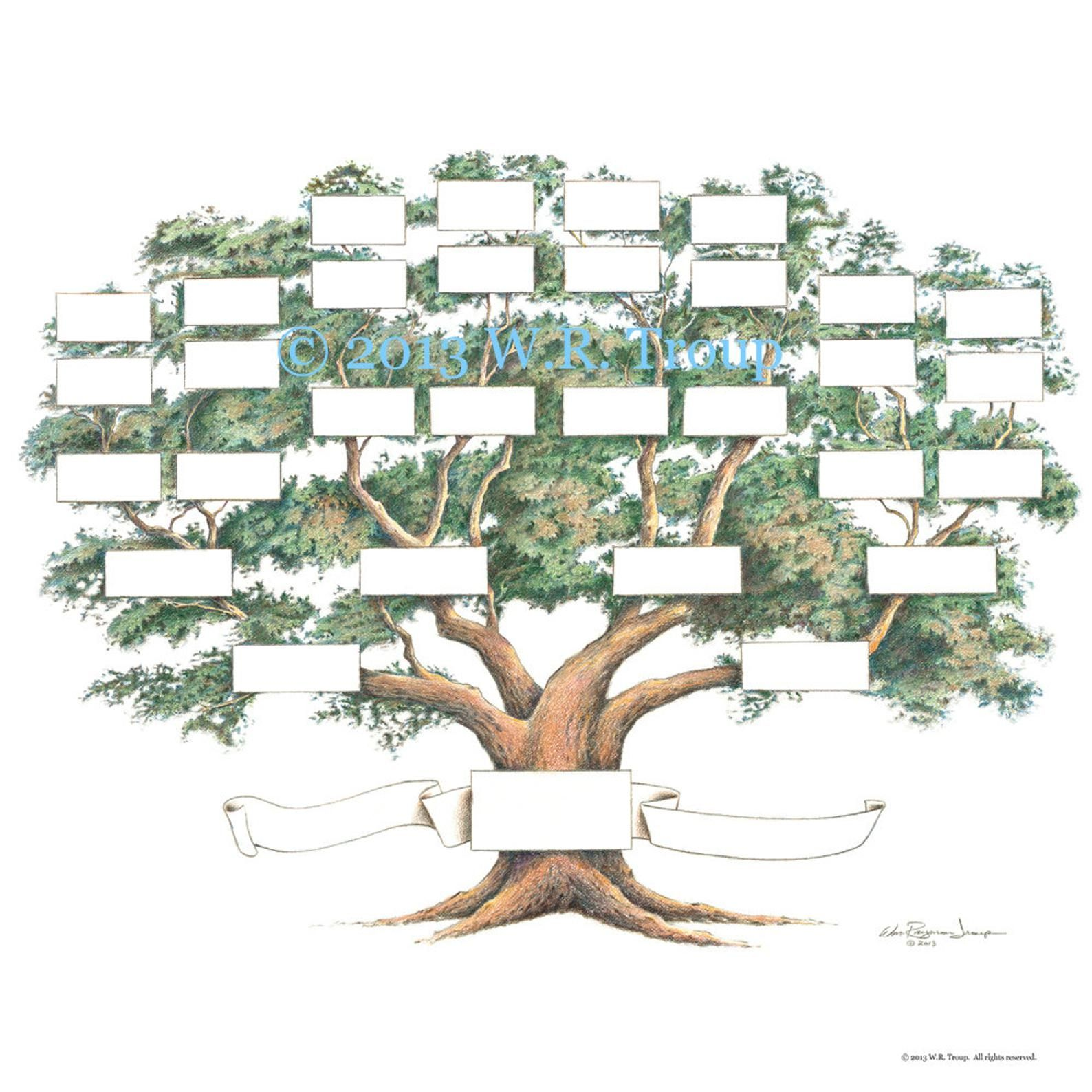 Family Tree Scrapbook Chart 12x12 Inch 5 6 Generations Ancestry Chart Pedigree Chart Genealogy Pet Pedigree In 2021 Family Tree Designs Family Tree Chart Blank Family Tree