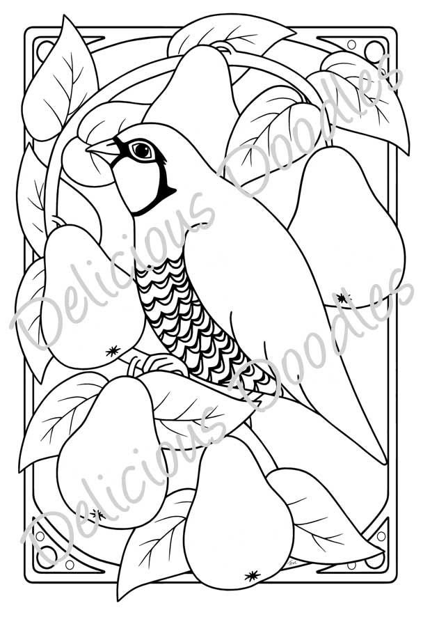 Partridge In A Pear Tree Line Drawing