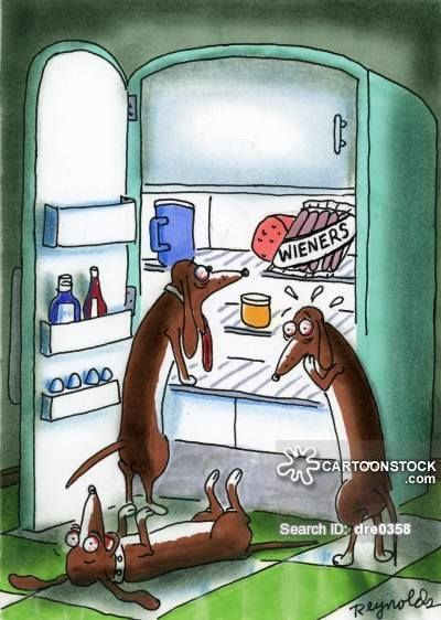 What S Cooking The Egg Dachshund Cartoon Wiener Dog Funny Dachshund