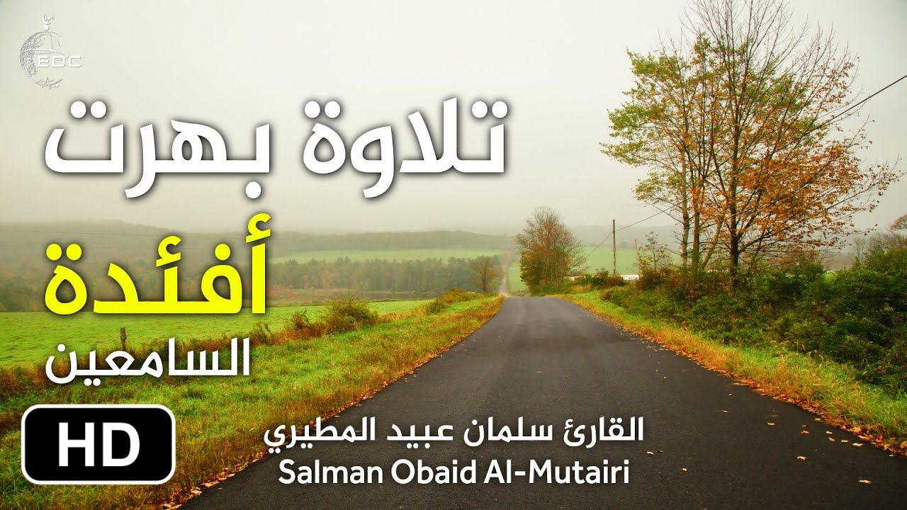آيات الله في خلقه صوت رائع جدا من سورة النور إستمع وساعد في نشرها Quran Surah Quran Quran Karim
