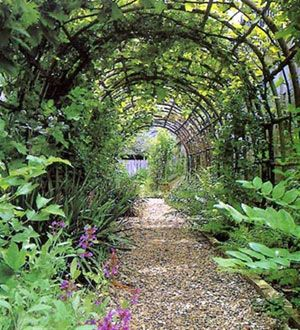 Garden Arches Arbors And Trellises   Selecting A Sturdy Garden Arch Or  Trellis For Your Garden