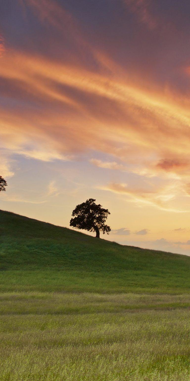 خلفيات شاشة موبايل سامسونج 2018 Tecnologis Sunset Wallpaper Nature Wallpaper Landscape
