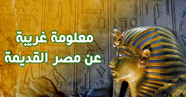 هل تعلم عن مصر الفرعونية معلومات ستذهلون بها Movie Posters Art Movies