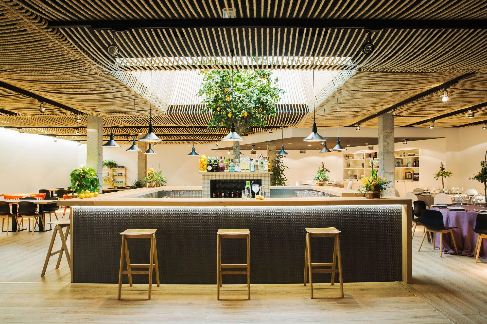 Zooco estudio hotel azul decoracion techos for Estudiar diseno de interiores online