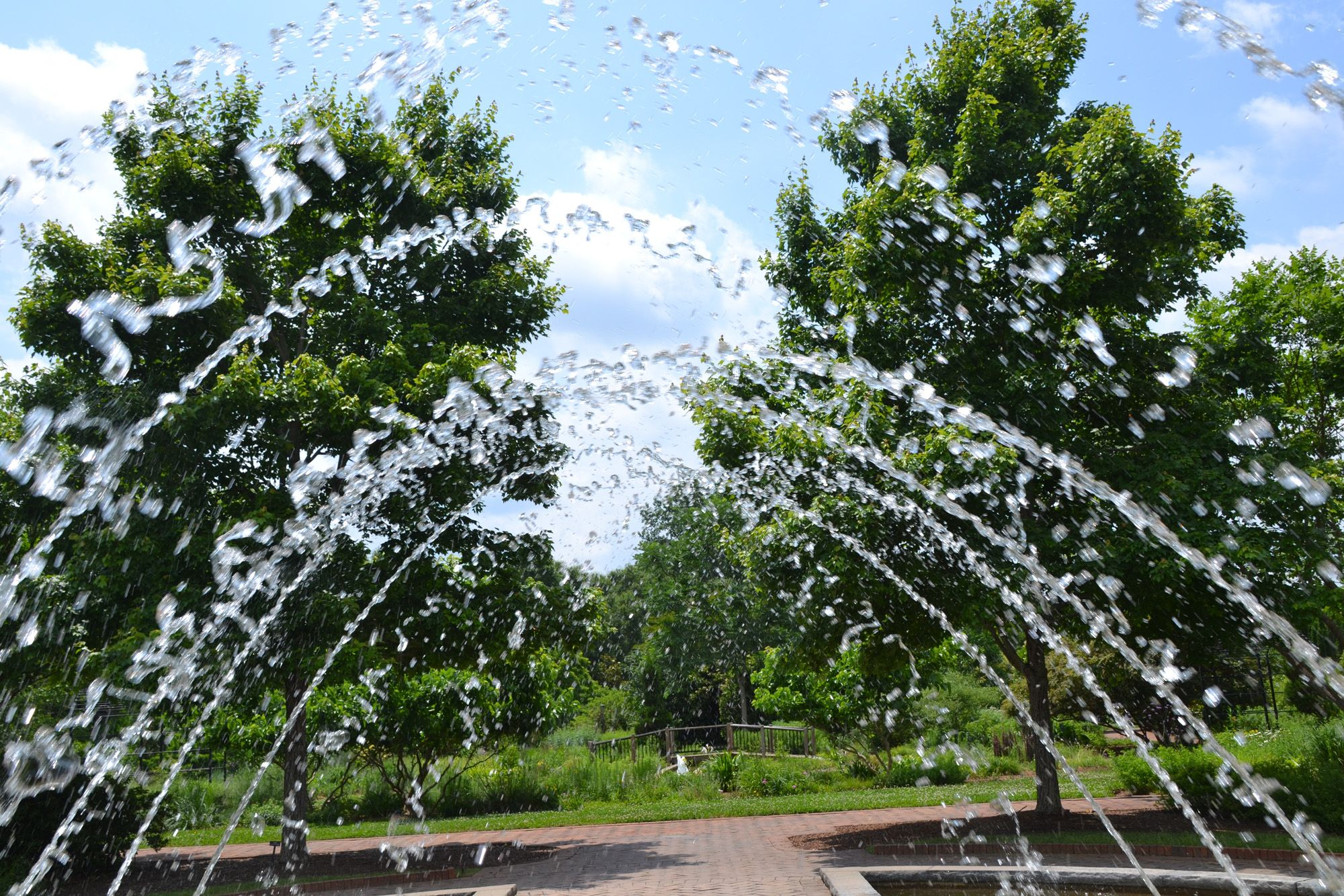 Daniel Stowe Botanical Gardens Belmont Nc Nc Is My Home Pinterest North Carolina