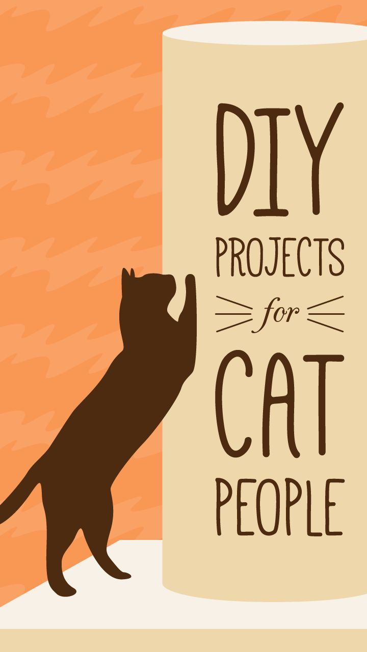 14 Purr Fect Diy Projects For Cat People Cat Diy Crazy Cats Diy Cat Bed