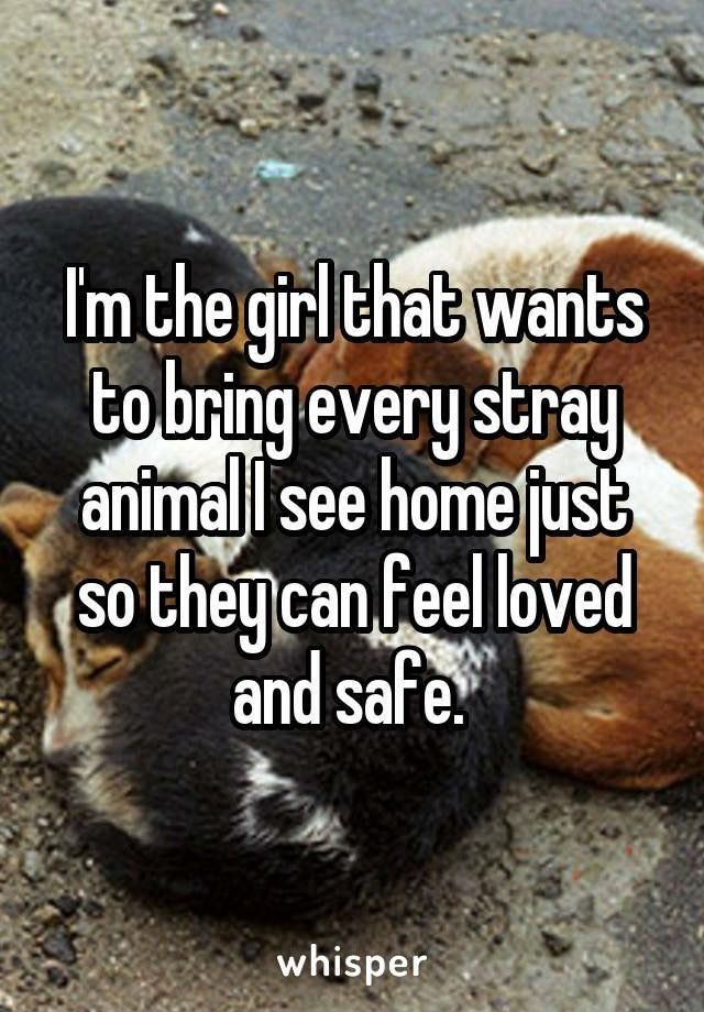 My Boyfriend Call Me The Pet Detective Because I Always On The Watch For A Animal In Need Pet Detective Cute Animals Dogs
