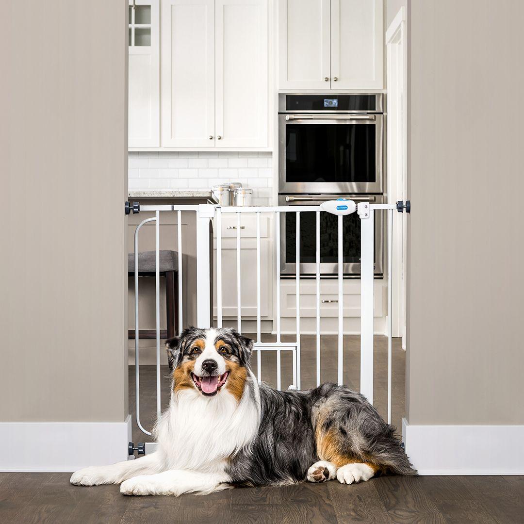 Carlson extra wide walk through dog gate with door