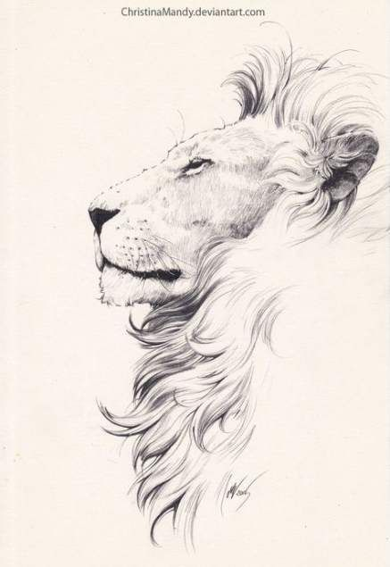 19 Ideas For Flowers Tattoo Small Wild Lion Sketch Animal Tattoos Tattoo Design Drawings
