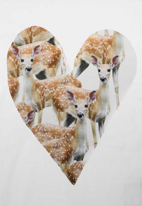 Oh deer @Hi Deer