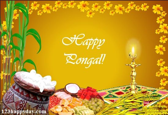 Pongal greetings in english pongal images pinterest happy pongal pongal greetings in english m4hsunfo