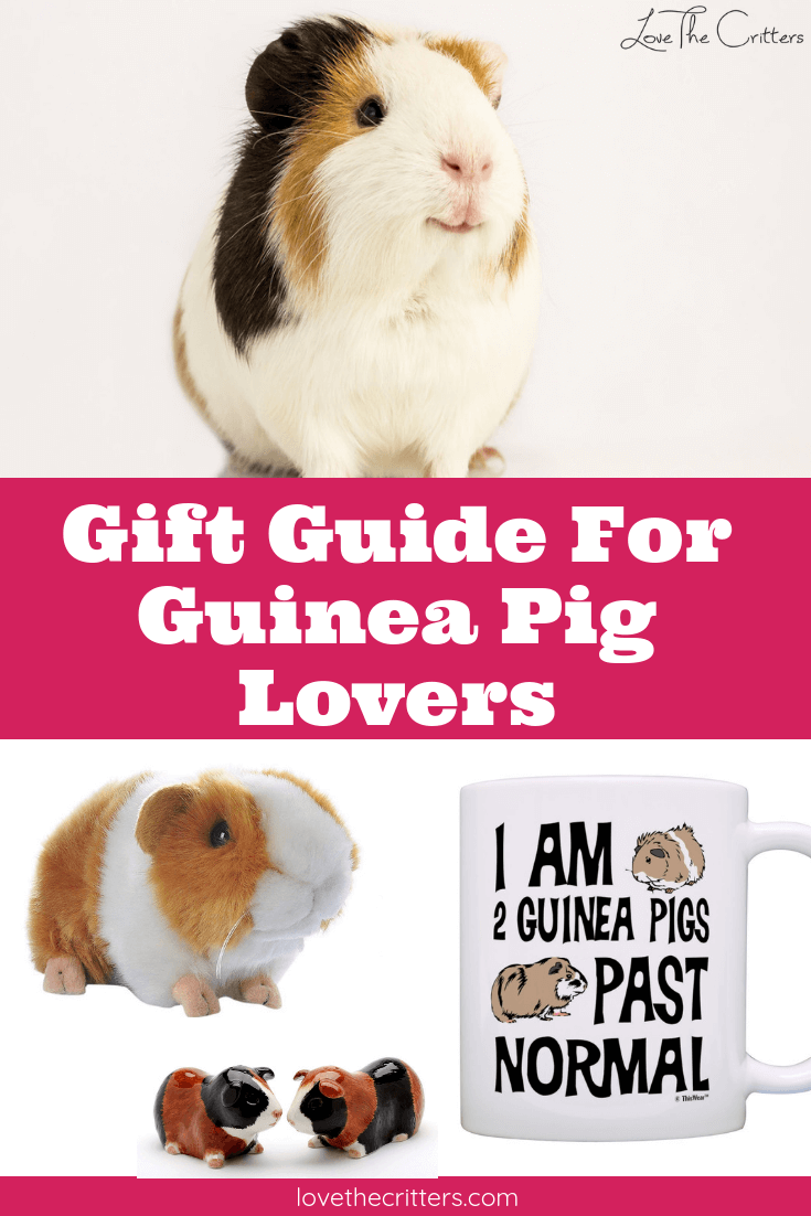 Guinea Pig Gifts 7