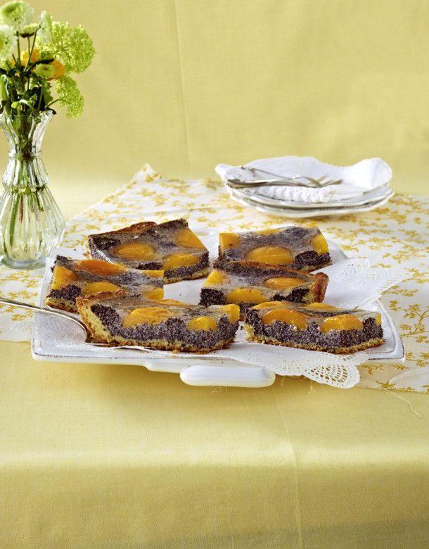 Unser beliebtes Rezept für Hefe-Mohnkuchen mit Aprikosen und mehr als 55.000 weitere kostenlose Rezepte auf LECKER.de.