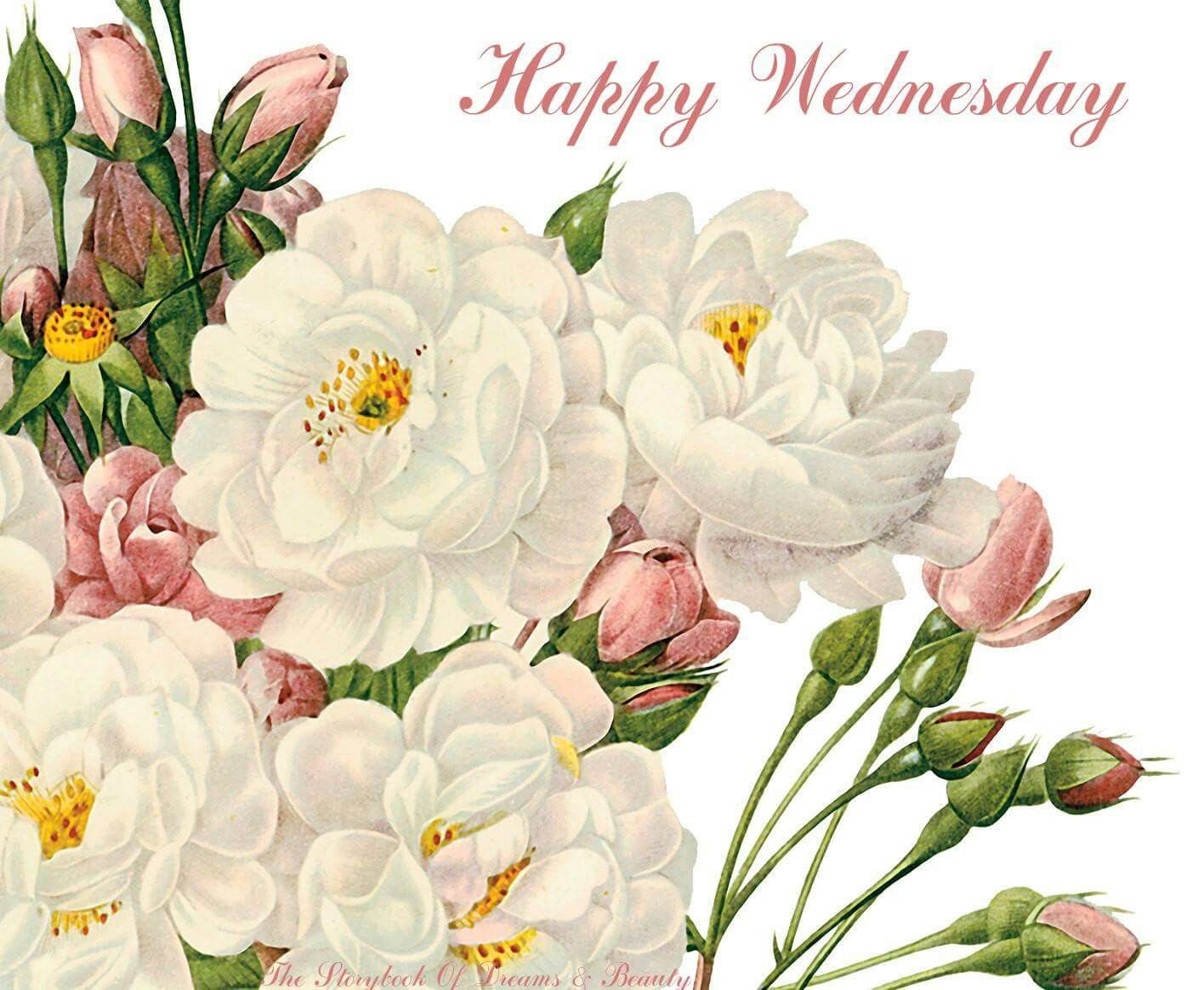 Happy Wednesday wednesday wednesday quotes happy wednesday ... |Wednesday Flowers