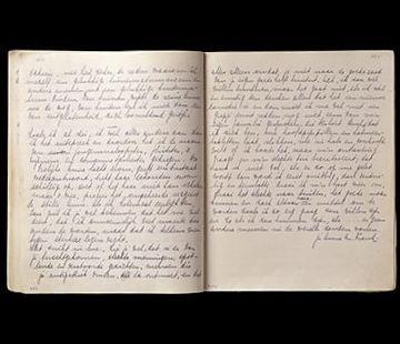 A last diary