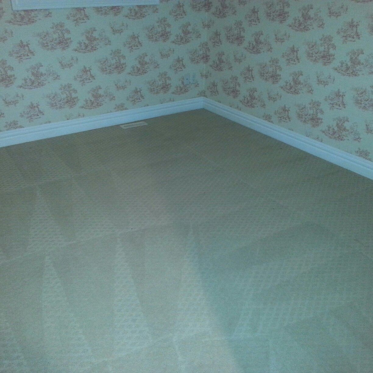 Carpet Cleaning Services How To Clean Carpet Carpet Cleaning Service Nisku