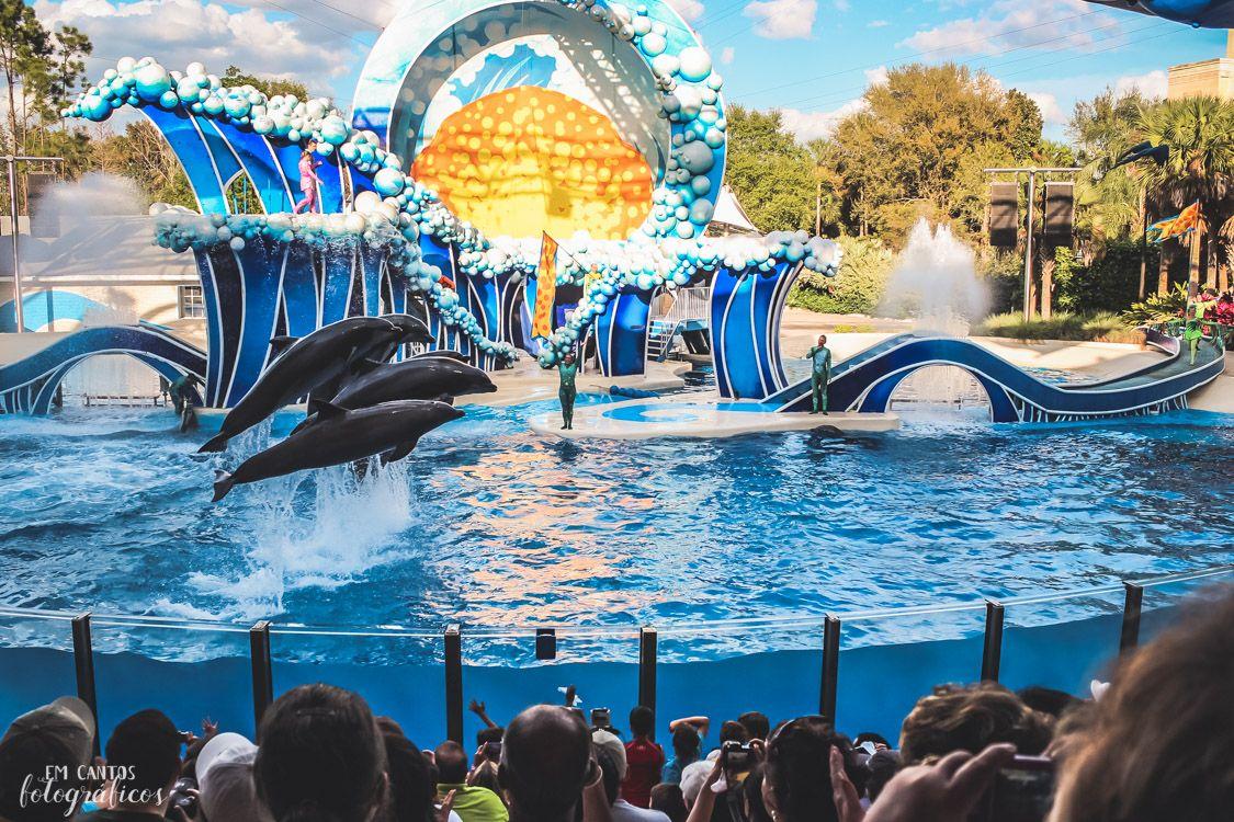 Parques de Orlando SeaWorld Blue Horizons