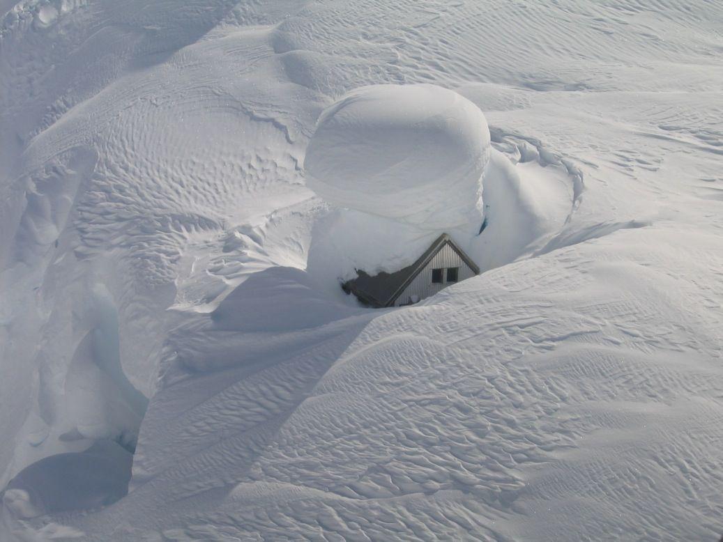снегом замело картинки прикольные через несколько