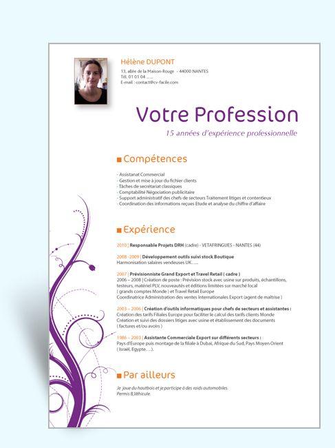 exemple cv consultant rh