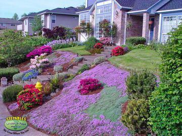 Photo of Read this article today which speaks about Lawn Ideas Landscaping