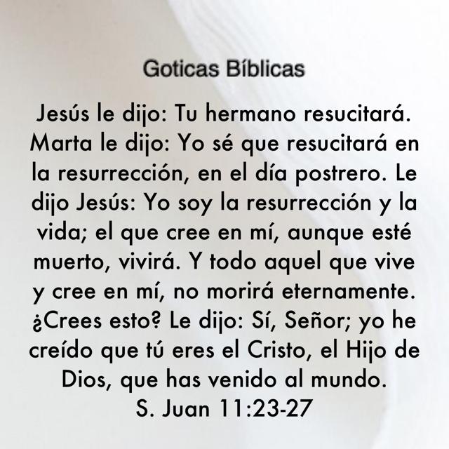 Pin De Myriam B En A Goticas Bíblicas 2 Mb En 2021 Resucitado Biblia Reina Valera 1960 Decir No