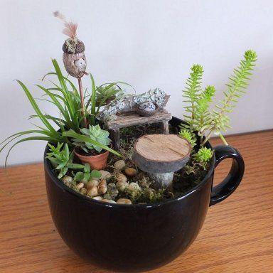 C mo hacer un jard n en miniatura e im genes de algunos for Diseno de fuente de jardin al aire libre