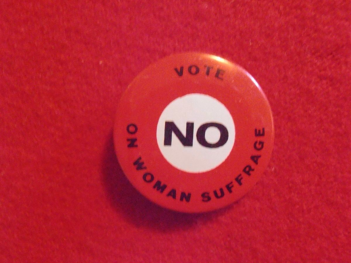 best images about suffrage battle for the th amendment on vote no on w suffrage button 1915