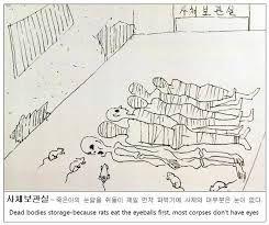 kim gwang il pigeon torture - Google 검색