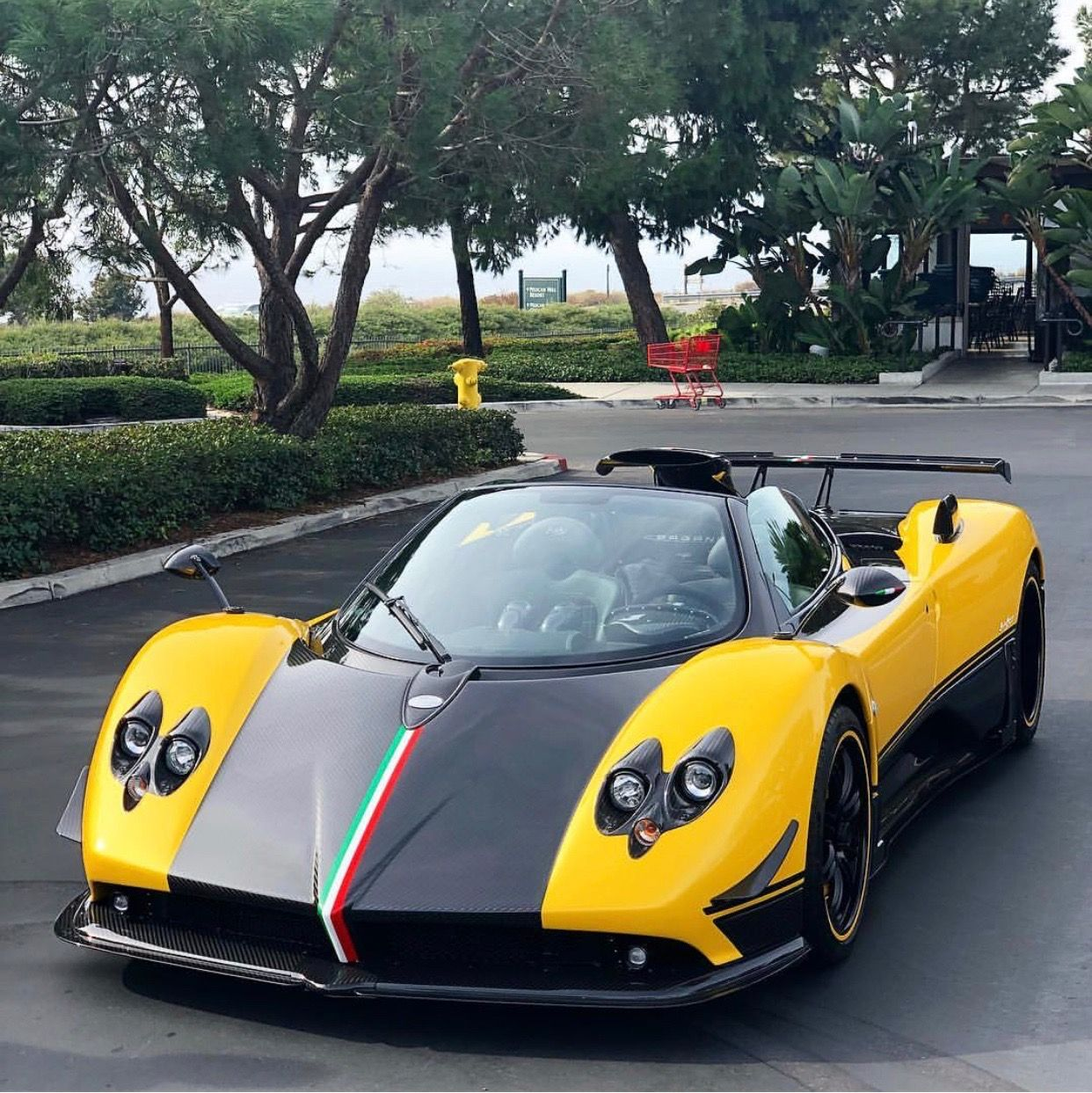 Pagani Zonda Cinque Roadster Painted In Giallo W/ Exposed