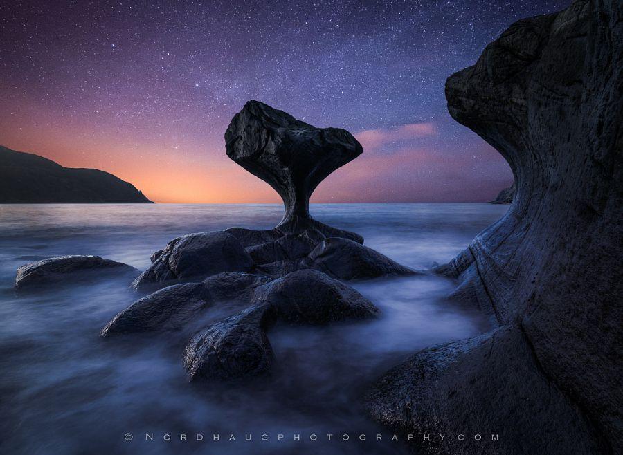 Starstruck by Dag Ole Nordhaug - Photo 143411601 - 500px