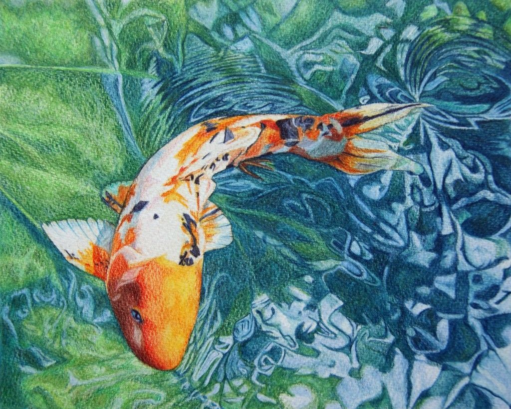 Koi carp final piece koi fish pinterest koi carp for Koi fish pond drawing