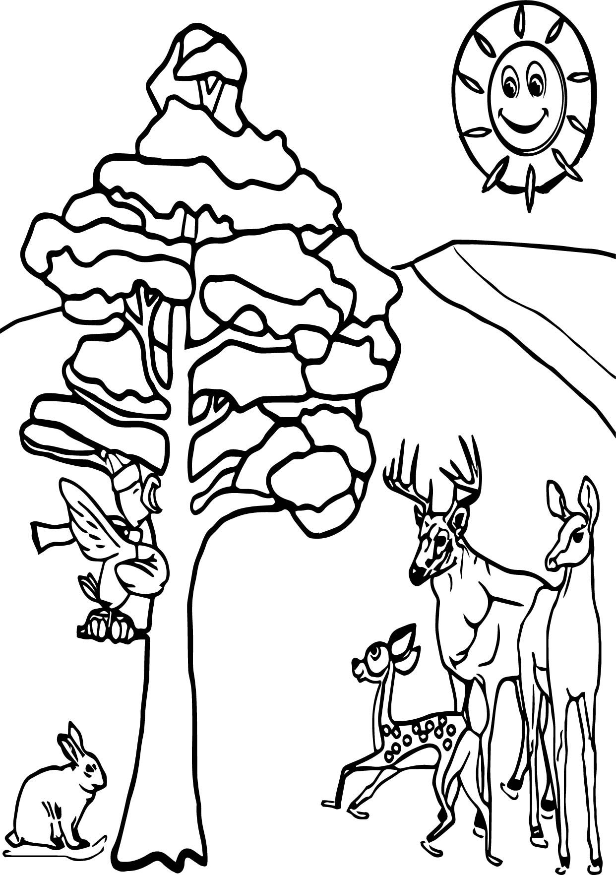 Coloring Pages Winter Animals Design